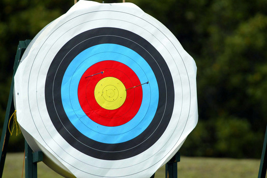 archery target 53