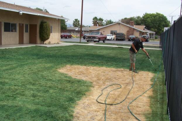 Painting Grass Green California