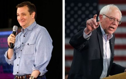 cruz and bernie