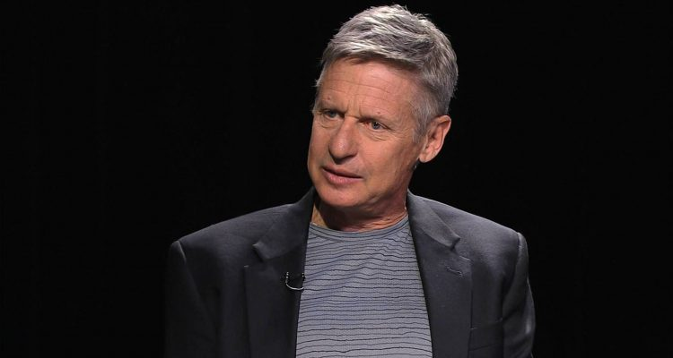 Gary Johnson, Libertarians