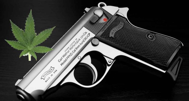 Gun, Marijuana