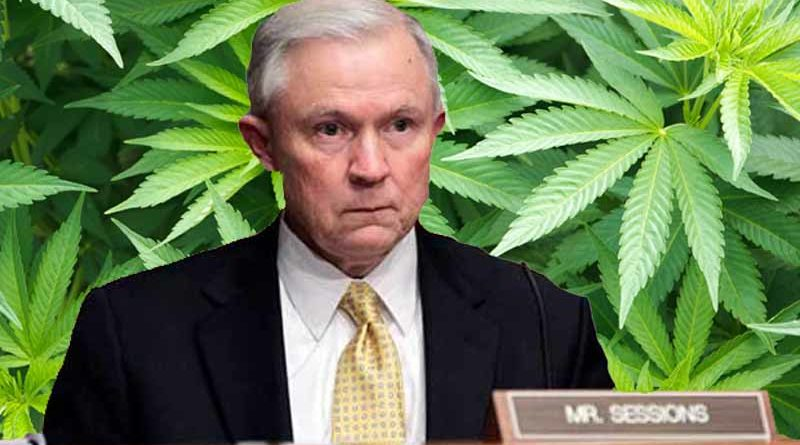 Image result for jeff sessions marijuana