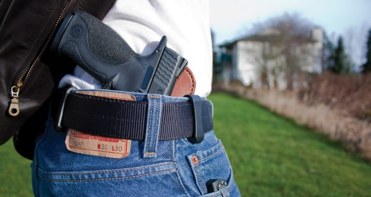 Republicans urge panel to end concealed carry permits