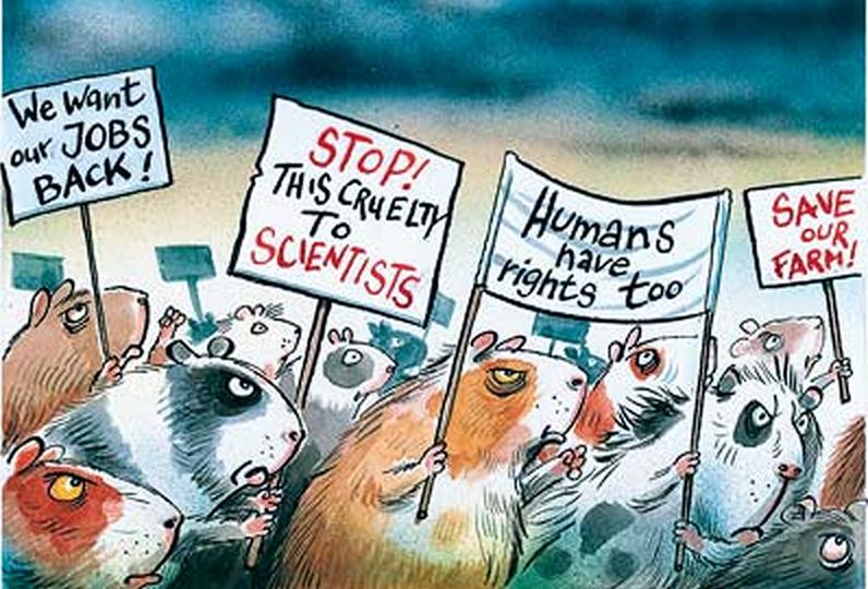 Do Animals Have Rights? Vegans Rage & Carnivores bite back!