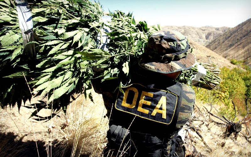 """america's failing war on drugs and Latin america & the caribbean  a grassroots movement in colombia is breaking from the failed """"war on drugs"""" and  a new pact to defend latin america's."""