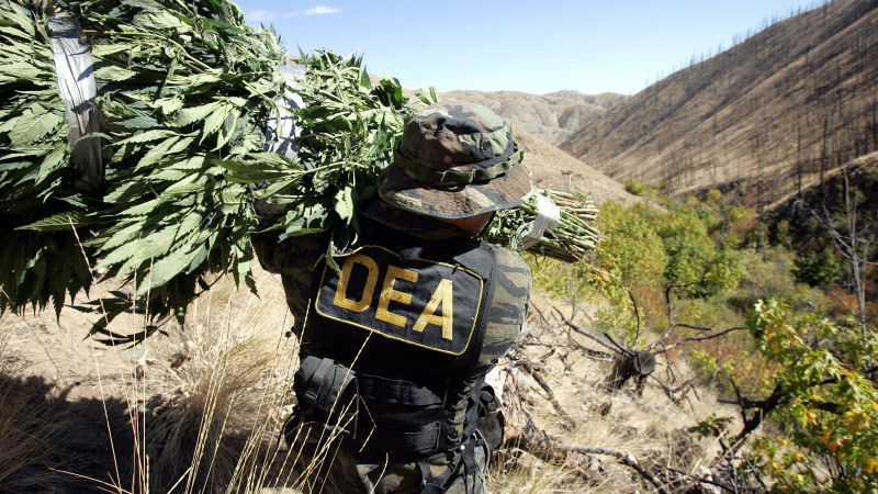 Report: Cops Want Pot Legal; Okay with Beating and Arresting People Anyway