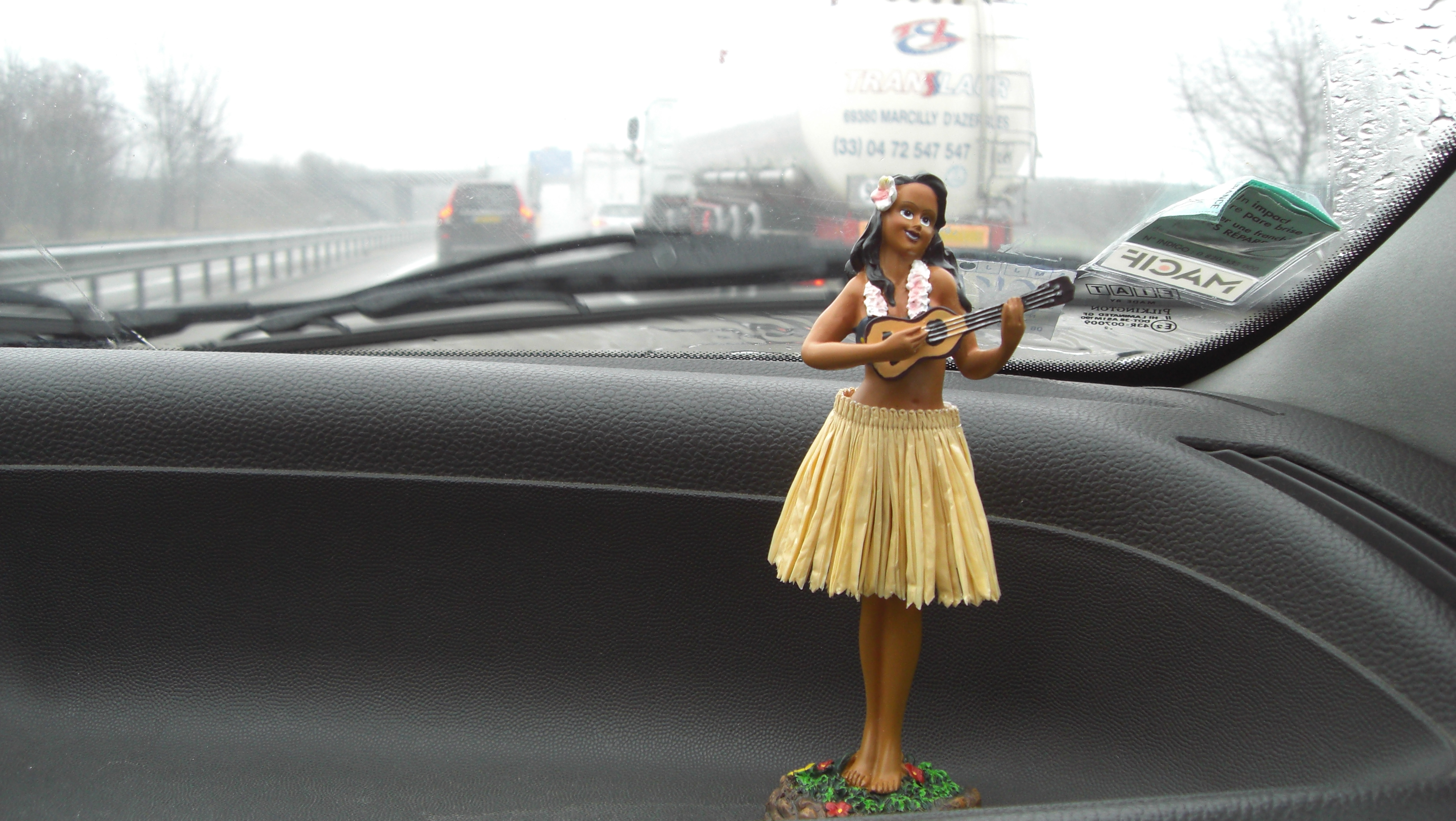 watch social justice warrior harasses lyft driver over hula doll