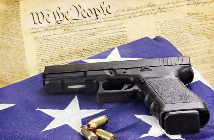 Top 5 Gun Rights Organizations Better than the NRA