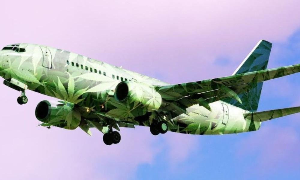 TSA Accidentally Tells Travelers They Can Fly With Medical Marijuana