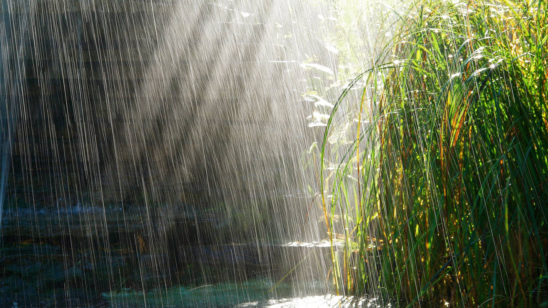 Study: Climate Models Have Been Estimating Rainfall Incorrectly This Whole Time
