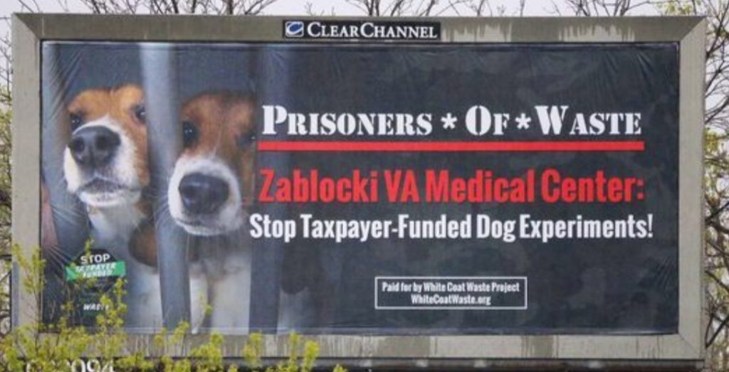 House Adopts Amendment To Defund Painful VA Dog Experiments