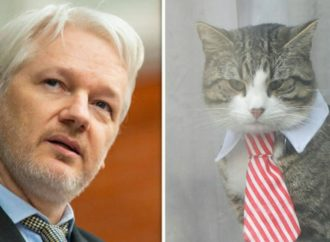 Ecuador Orders Julian Assange To Babysit Cat And Clean The Bathroom For Internet Privileges