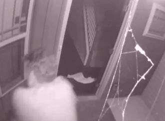 South Carolina Mom Shoots Morning Home Invader