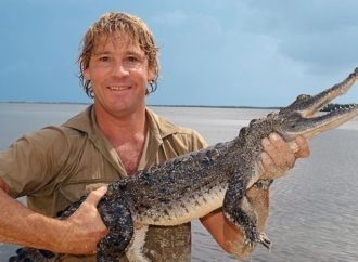 PETA Trashes Steve Irwin On Twitter, Gets #REKT In The Replies