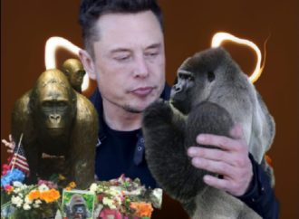 "Elon Musk Drops His First Rap Single: ""RIP Harambe"""