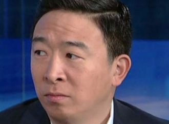 WATCH: Andrew Yang Froze When Asked About His Universal Basic Income