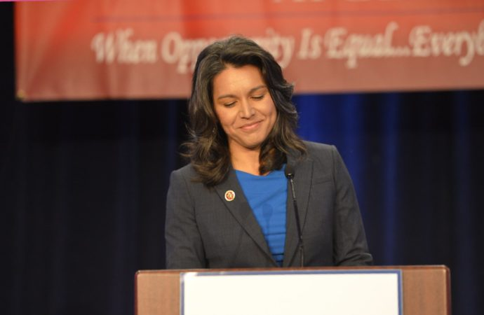 Tulsi Gabbard Remains Low in 'Approved' DNC Polls Despite Popularity
