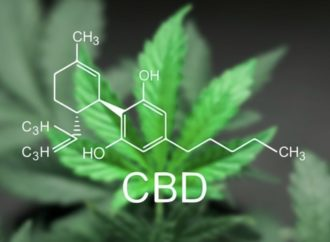 CBD for health and wellness: Everything you need to know