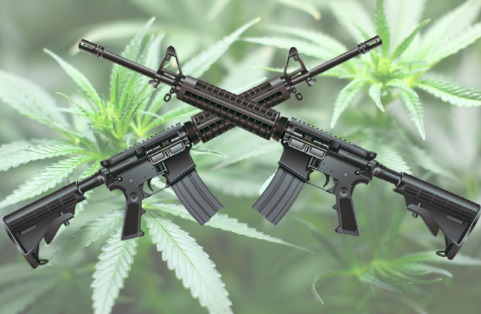History Rhymes: From The War on Drugs to The War on Guns