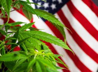 Cannabis Candidates and Political Prohibitionists