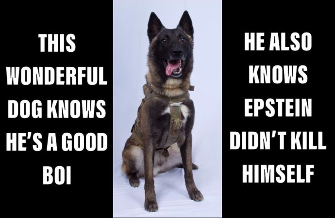 Former Navy SEAL Speaking About Military Dogs Adds In A Quick Thought About How Epstein Died